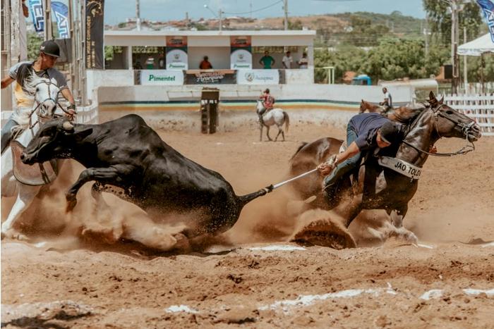 Decreto autoriza o retorno das vaquejadas e dos eventos agropecuários na Paraíba