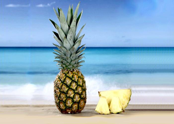 Paraíba é o segundo maior produtor de abacaxi do Brasil